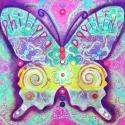 Philippa\'s papillion